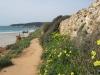 Cami de cavalls, Menorca
