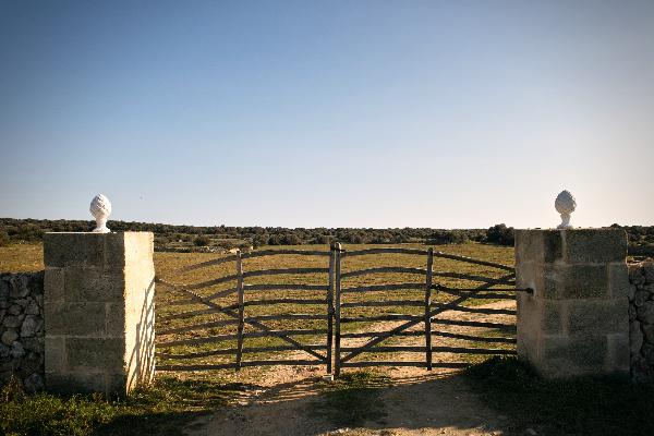 barreras de ullastre en Menorca