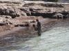 Pesca de puu en Menorca